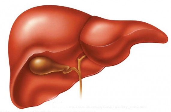стероиды для сжигания жира и роста мышц